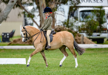 Another growing up all too fast is the adorable Summer Romeo pictured riding her super cute pony Eaglepark Crystal Roulette. Summer had a terrific show with placings in both her lead rein & ridden Hunter Pony over 12hh n.e. 12.2hh class