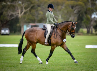Ari Stella Hall & formerly SA ownded Andrea Merry's super succesful hunter hack Quantador trotted out looking like they had been together for years not a mere 3 weeks. Ari & 'Q' made her first class a winner claiming the Child's Hunter Hack win