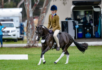 Ayda Peterson & her lovely coloured pony Mallawa Park Hashtag worked beautifully in the Hunter Pony over 12hh n.e. 12.2hh class