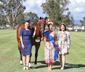 Steph O'Connor started the day with a win and ended her day taking home Grand Champion Ridden Thoroughbred Exhibit! Steph is pictured here winning the Fashions on the Field 21-35 yo class this morning. Jemma Cutting and Julieanne Horsman judged the class.