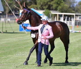 "Patrick Glanville (leading ""Our Boy Bob"") was the winner of the Fashions on the Field 35-50 yo class."