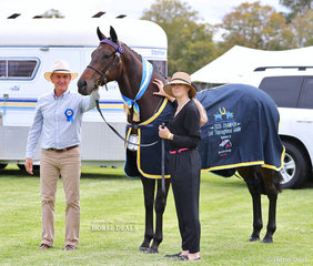 """Our Boy Bob"" was declared Champion Led Thoroughbred Gelding, exhibited by Phillipa Lawson, with judge Michael Lynch."