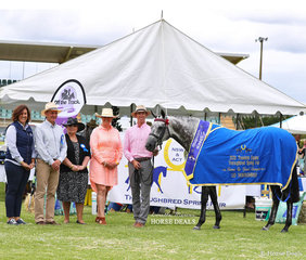 """Runner Up Grand Champion Led Thoroughbred Exhibit """"Set In Diamonds"""" exhibited by Toni Ambrose, Courtney Larard and led by Matthew Birch. Pictured with Sponsor Linda Lord and judges Michael Lynch, Julie Butler, Jo McKinnon."""