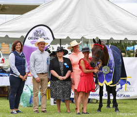"""Leanne Jones' entry """"Gentlemen"""" was declared the Grand Champion Led Thoroughbred exhibit. Pictured with sponor representative from Poseidon Equine Linda Lord, and judges Michael Lynch, Julie Butler and Jo McKinnon."""