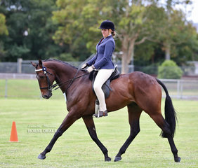 """Brooke Howe's """"Byzantium"""" picked up a place in the Ridden All Rounder Thoroughbred over 16hh class."""
