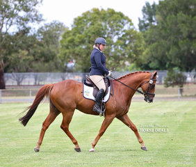 """Winner of the Ridden All Rounder Thoroughbred over 16hh """"Sir Wiggle"""", exhibited by Emily Kendall."""
