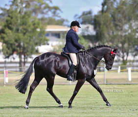 "Jo Maunder and ""Maya Maya"" pictured during their individual workout, which won them Reserve Champion Ridden ANSA."