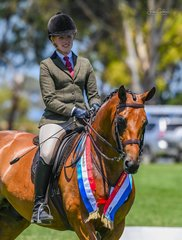 Kaitlin Labahn ever consistent and lovely Command Of Sefton was Champion Hunter Galloway this afternoon in ring 2 under judge Bev Richards. Kaitlin also won the champion ridden Hunter Pony in ring 1 with her lovely grey Bamborough Squire