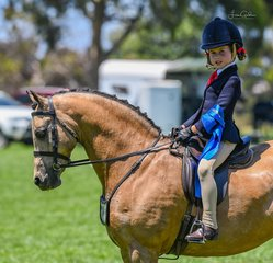 True childs pony Brandy Hollow Candyman owned by Stella Horspole had a new rider today Milla Romeo, who was all smiles after winning her rider 5 to 8 years.