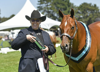 Grand Champion Quarter Horse Delpine Imperial Reign shown by Karen Smith