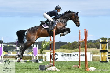 Olympic Eventing rider, Amanda Ross has proven herself to be very handy in the showjumnping arena as well. She rode , 'Dondiablo' to fourth place in the tough Mini Prix today.