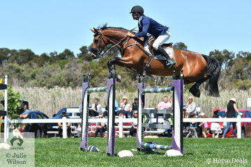 Well known and successful eventing rider, Robert Palm can also turn his hand successfully to straight showjumping. He rode, 'Jaybee Vibrant' to take fourth place in the Browns Sawdust and Shavings Grand Prix.