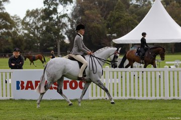 Christine Nichols' well performed Mirinda Alabaster gave Poppi Plumb a super ride in the Child's Large Pony