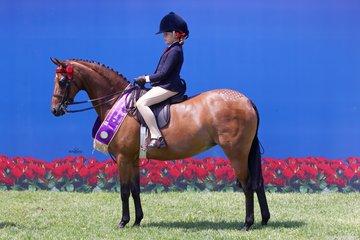 A quinella for Emma Richardson in the Child's Medium Pony Championship with Braeburn Park Spring Dance Reserve Child's Medium Pony Championship