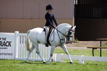 Stella Gilmour placed second in the Rider under 9 years on Lykanarro Rocklynn
