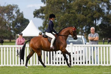 Mt Miss Dior  ridden and nominated by Keeley Dykes in the Child's Small Galloway