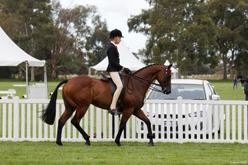 Harrison Postil competed in the Child's Small Hack with the Francesca Christie nomination Manwell