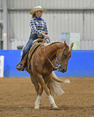 Carol Elliott and LT Zips So Smooth competing in Ranch Riding.