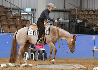 Cees Love and Kisses ridden by Gill Tangey in the Trail class.