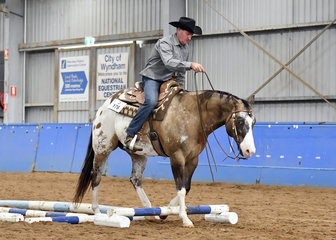 DGS Rocka Song, and Darren Sinclair, in the Trail class.