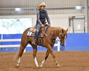 QXH Hot Rod with Rebecca Salt in  Ranch Riding.