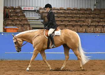 Tania Bishop riding SVQ Show Us Your Assets in Hunter Under Saddle
