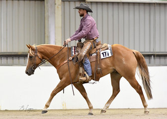 Chisums Leo ridden by  Corey Holden in Ranch Trail