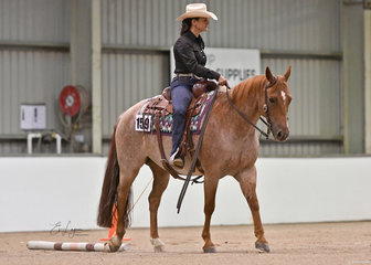 Connie Jessup and Get Lucky showing in the Ranch Trail class.