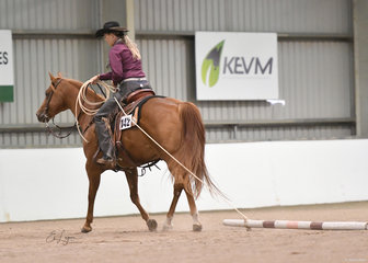 MPQ Rich N Classic shown by Jessica Young  for Sue Anderson in Ranch Trail
