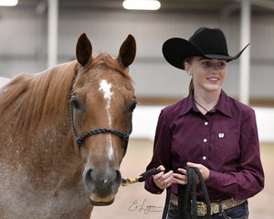 Get Lucky shown in Youth halter by  Bec Newman.