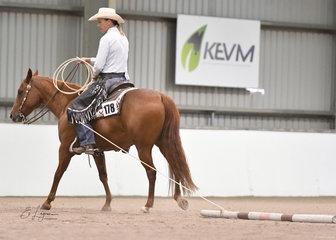 Sashas Smokin Lena shown by  Yvette Wealands in Ranch Trail