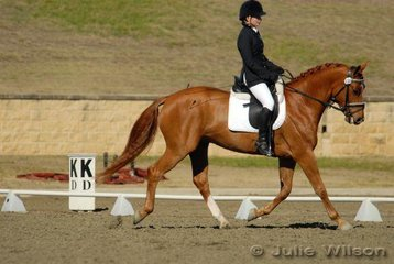 Alexis Hellyer from NSW rode Waca W in the Capricorn Feed Bins Preliminary 1.3 to score 67.4 % for 7th place.
