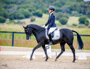 Butterfly FF, Gold Champion Preliminary for Sabble Farm