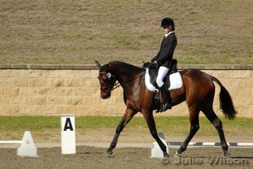 Jamie Wright from NSW rode Tainui Lad in the Capricorn Feed Bins Preliminary 1.3 to score 60.4%.