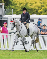 Dale Plumb continues to produce beautiful thoroughbreds and piloted his elegant grey DP Galaxy around the ring in his Newcomer Large Hack class with ease.