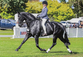 Ella Doherty put Brooke Wheelers beautiful boy Coldestream Ultimate through his paces in style to be rewarded with third place in the Childs Small Hunter hack class week 1 of Barastoc.