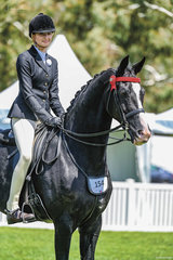 Jessica Dertell rode Sabble farms big moving gelding Zanzibar in the Childs Large Hack class, before heading to Willinga Park to claim two big wins at Dressage by the Sea.