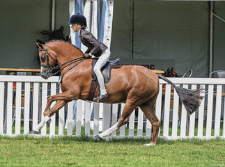 Jessica Sharp was picture perfect & showed us how a great gallop goes on her ever perfect pony Imperial Vagabond, the pair looked as great as ever after his much deserved break from showing.