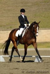 Alexandra Bruggisser from NSW rode Capricio in the Capricorn Feed Bins Preliminary 1.3 to score 72% to win the class.
