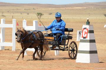 Helen Barnes driving Lorabella Matilda'