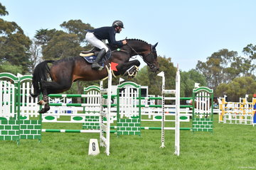 James Arkins from Moss Vale in NSW with his impressive 'Eurostar I' (Diarado/Chacco Blue mare) on their way to posting a good four penalty first round and clear in the second, to take fourth place in the World Cup Qualifier CSI/W.