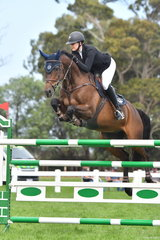 Chatham Park rider, Kate Hinschen with her, 'Finch Farm Cadel' by Charlemange Ego Z during the World Cup Qualifier. Kate also rode the winner of the Seven Year Old Young Horse class, Yalambi's J'adore.