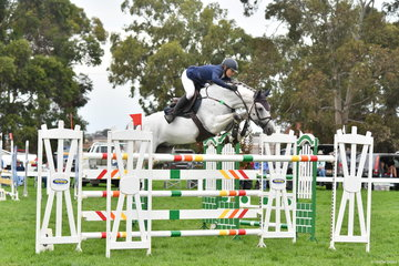 The always competitive, Ally Lamb jumped four and four aboard her careful and imported Berlin stallion, 'Eagle Rock' to take seventh place in the World Cup Qualifier.