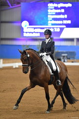 Olivia Gillespie impressed with her Andalusian, 'Versace I' (Animoso/Galleon III mare) that took third place in the Marcus Oldham Challenge.