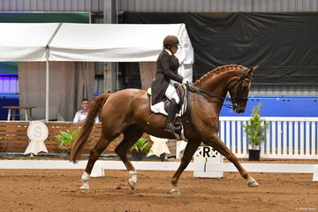 Former Champion of Champions Young Horse winner, Kerry Mack is pictured aboard her talented, home bred, 'Mayfield Limelight' by Whisper out of a Calypso Classic mare that Kerry bred, Mayfield Clarion. They are pictured during the Grand Prix Freestyle.