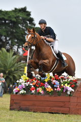 Edward Darby riding Dawn of the Day led from the start of the Pryde's CCI** winning the dressage and then posting clear rounds in both the cross country and showjumping.