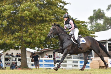 Hannah Klep rode Tulara Chicouve to second place in the Pryde's CCI**.