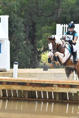 Rachel Lyon's very careful Kingfield Ricochet took fifth place in Section 2 of the CCI2*.