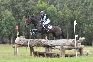 Lilly McGregor and her, 'Equissage Dynamic King' are pictured on their way to victory in Section 5 of the Pryde's CCI**.