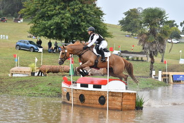 Jessica Grosmann and , 'Sandhills Stanza' jump ship on the Horseland CCI*** course. Light rain marred  the beautiful autumn weather, but there was plenty of cover with the property never looking better.
